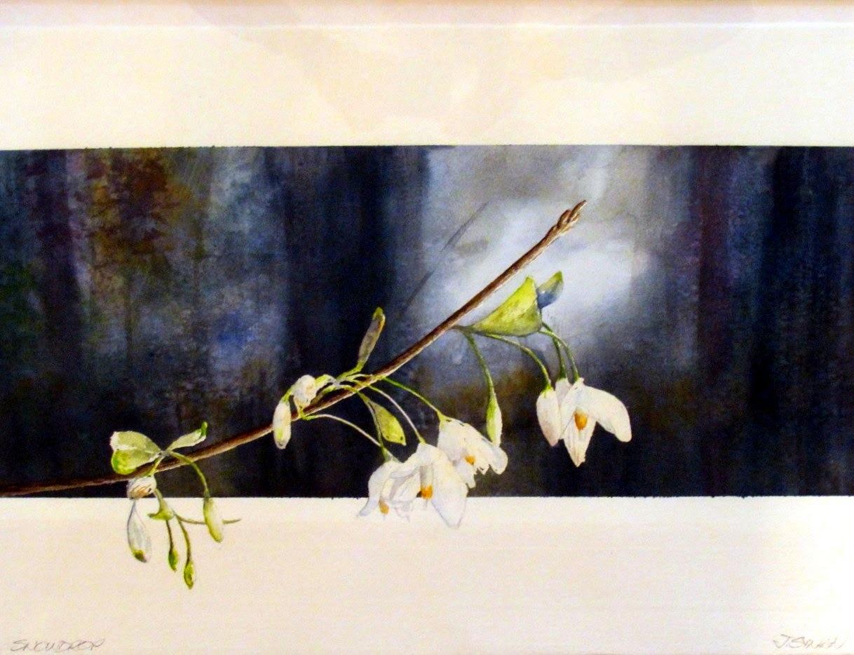 14 x 20 Snowdrop Tree Blossoms