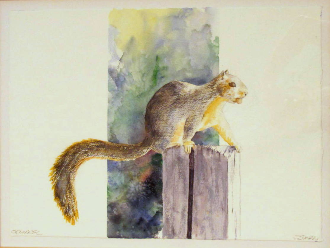 18 x 24 Squirrel